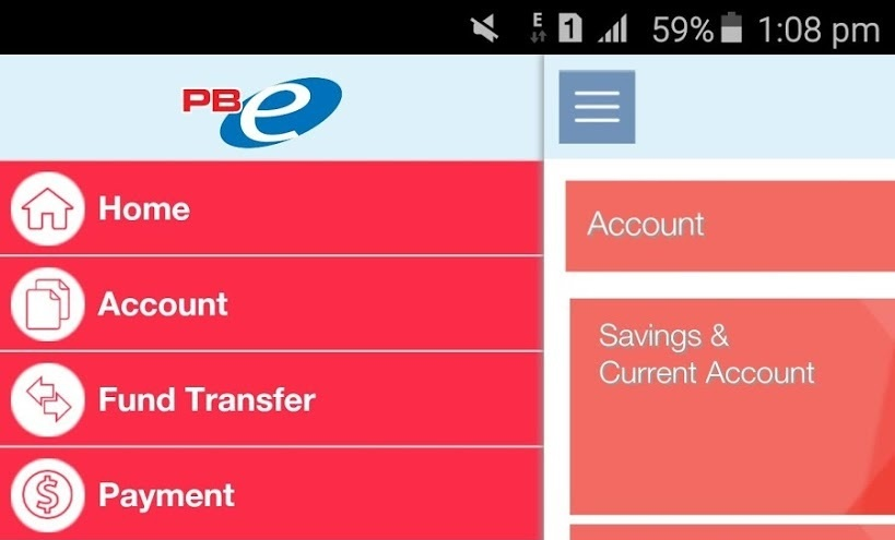Check Balance Public Bank